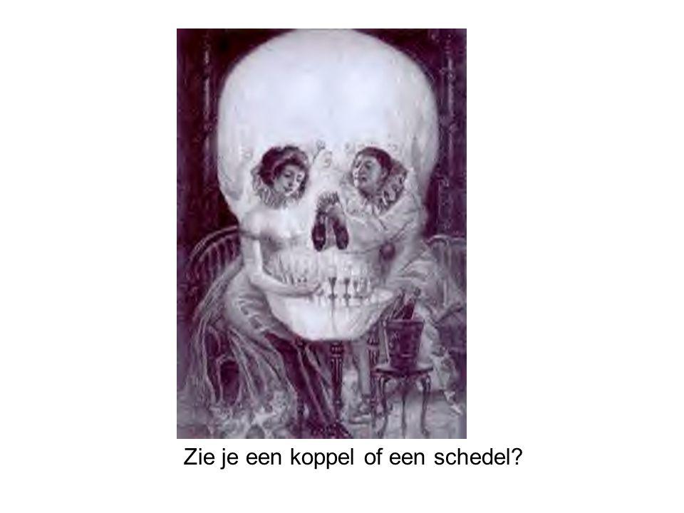Zie je een koppel of een schedel?