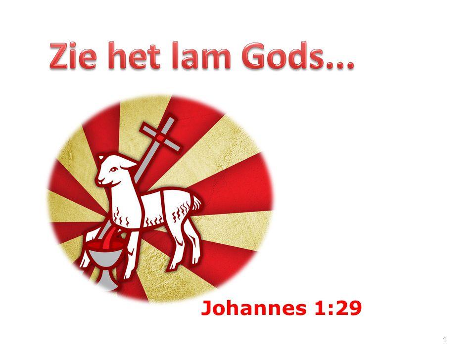 Johannes 1:29 1