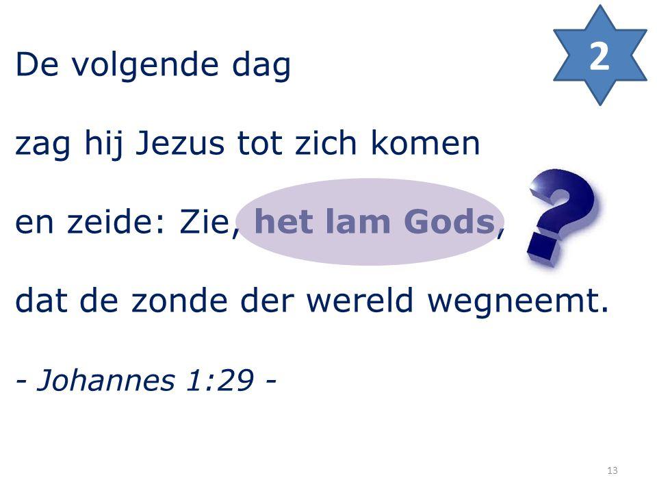 De volgende dag zag hij Jezus tot zich komen en zeide: Zie, het lam Gods, dat de zonde der wereld wegneemt. - Johannes 1:29 - 2 13