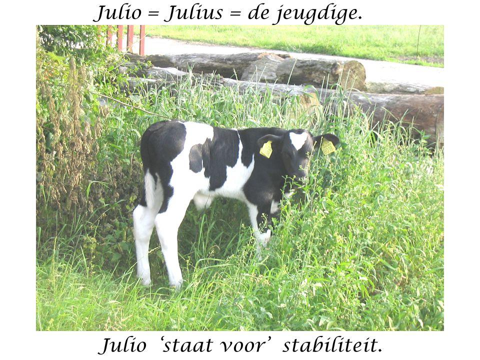 Julio = Julius = de jeugdige. Julio 'staat voor' stabiliteit.