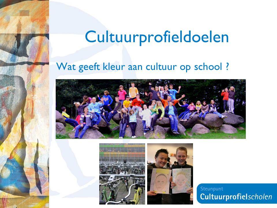 11 Cultuurprofieldoelen Wat geeft kleur aan cultuur op school ?