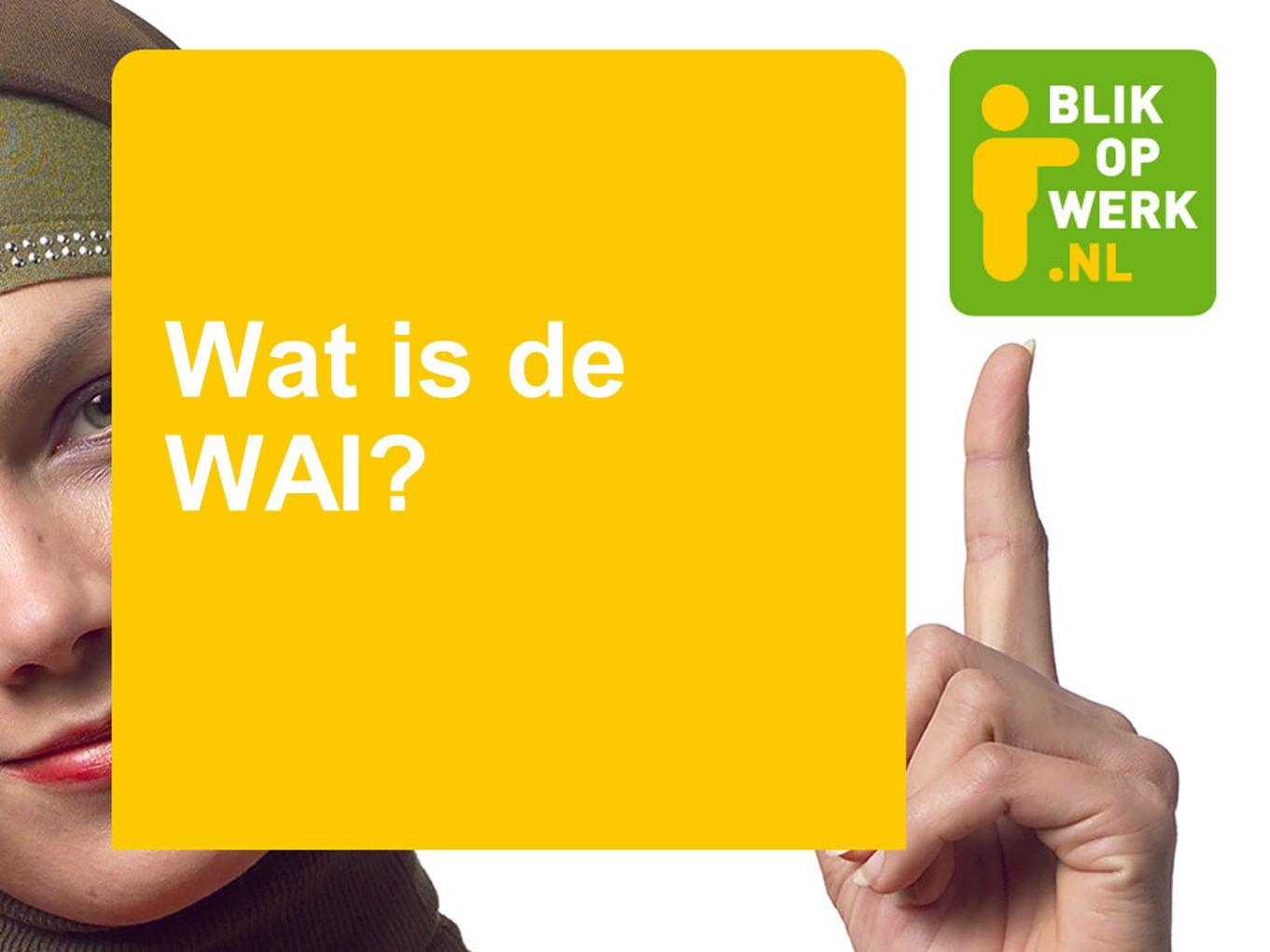 Wat is de WAI?