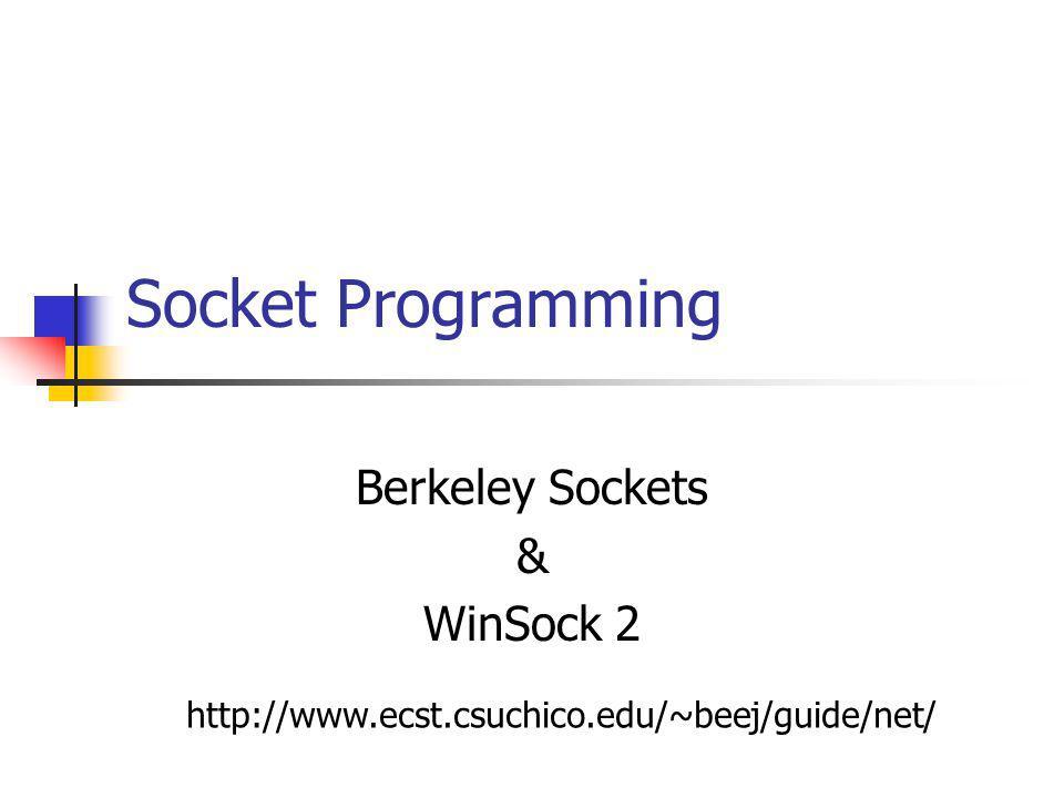 Socket Programming Berkeley Sockets & WinSock 2 http://www.ecst.csuchico.edu/~beej/guide/net/