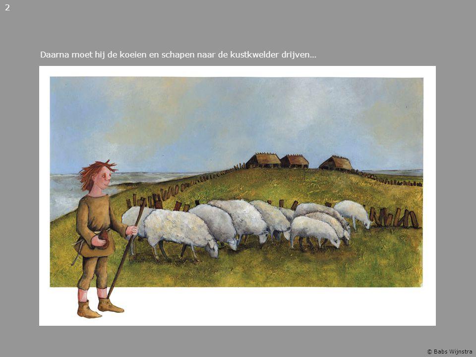 Daarna moet hij de koeien en schapen naar de kustkwelder drijven… 2 © Babs Wijnstra