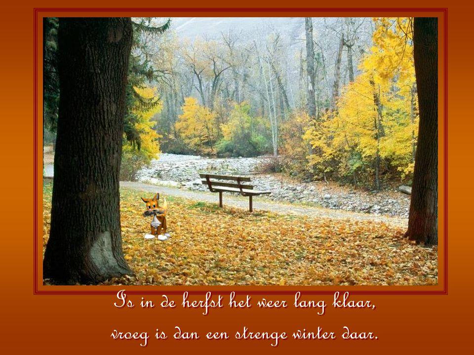 Worden de bladeren geel en krom, kijk dan maar al naar uw kachel om.