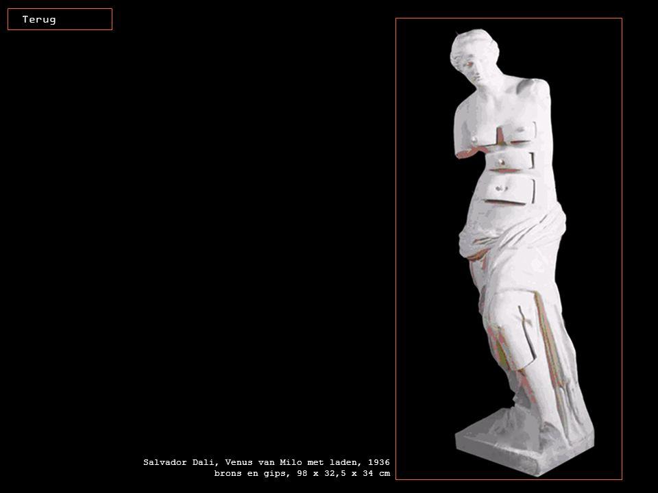 Salvador Dali, Venus van Milo met laden, 1936 brons en gips, 98 x 32,5 x 34 cm Terug