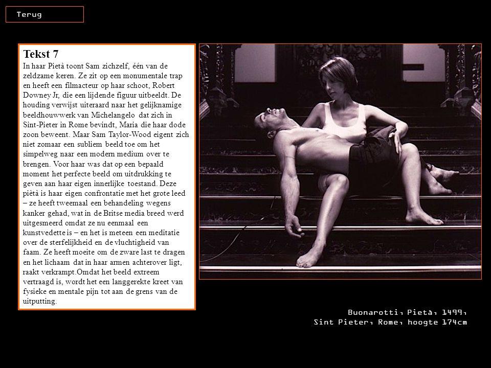 Tekst 7 In haar Pietà toont Sam zichzelf, één van de zeldzame keren. Ze zit op een monumentale trap en heeft een filmacteur op haar schoot, Robert Dow