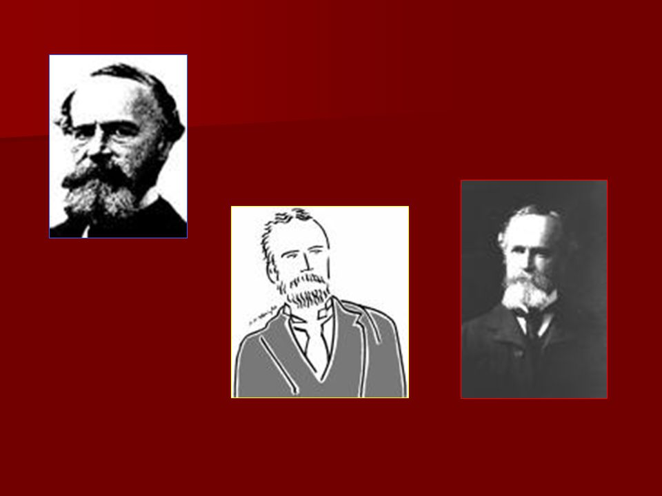 PSYCHOLOGIE NEUROFYSIOLOGIE FILOSOFIE WILLIAM JAMES