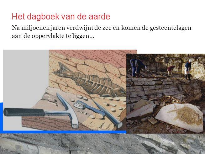 Na miljoenen jaren verdwijnt de zee en komen de gesteentelagen aan de oppervlakte te liggen… Het dagboek van de aarde