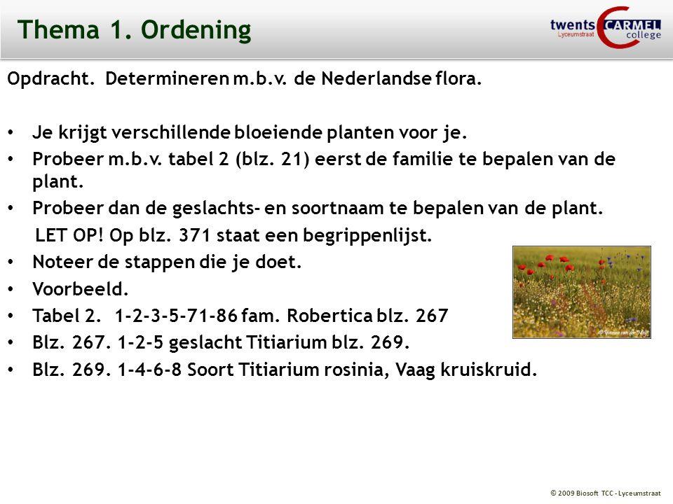 © 2009 Biosoft TCC - Lyceumstraat Thema 1. Ordening Opdracht. Determineren m.b.v. de Nederlandse flora. Je krijgt verschillende bloeiende planten voor