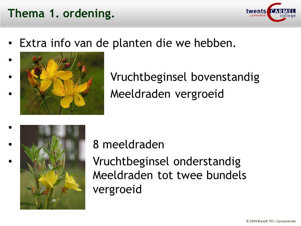 © 2009 Biosoft TCC - Lyceumstraat Thema 1. ordening. Extra info van de planten die we hebben., Vruchtbeginsel bovenstandig Meeldraden vergroeid 8 meel