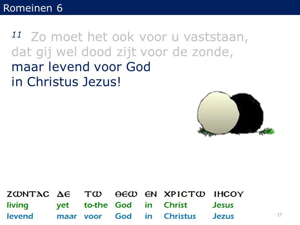 Romeinen 6 11 Zo moet het ook voor u vaststaan, dat gij wel dood zijt voor de zonde, maar levend voor God in Christus Jezus! 17