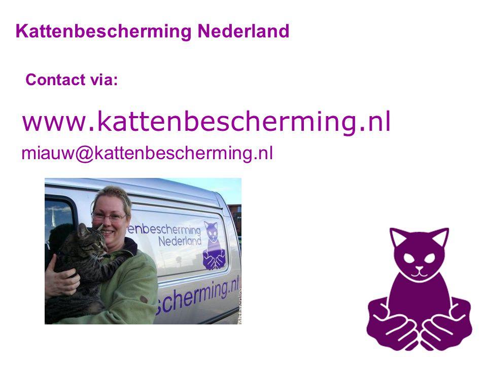 Contact via: www.kattenbescherming.nl miauw@kattenbescherming.nl Kattenbescherming Nederland