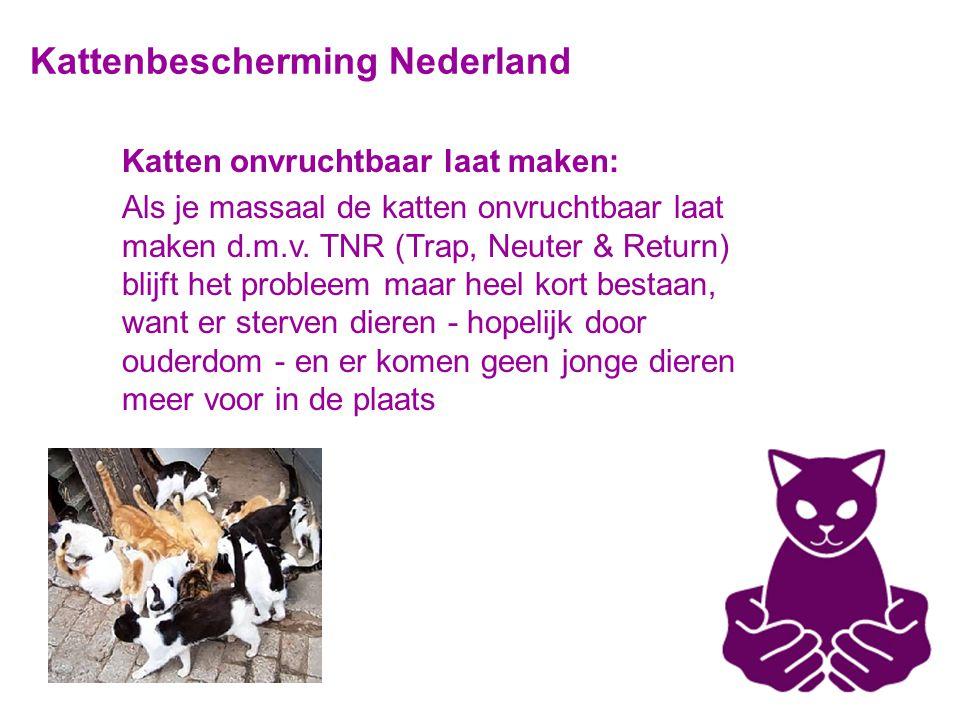 Kattenbescherming Nederland Katten onvruchtbaar laat maken: Als je massaal de katten onvruchtbaar laat maken d.m.v.