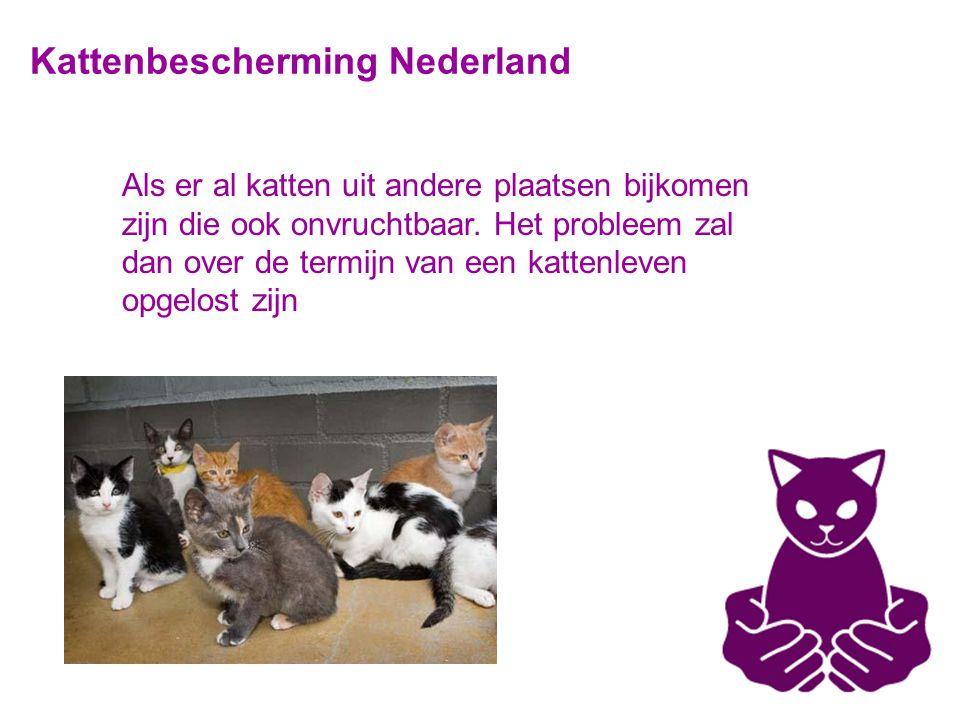 Kattenbescherming Nederland Als er al katten uit andere plaatsen bijkomen zijn die ook onvruchtbaar.
