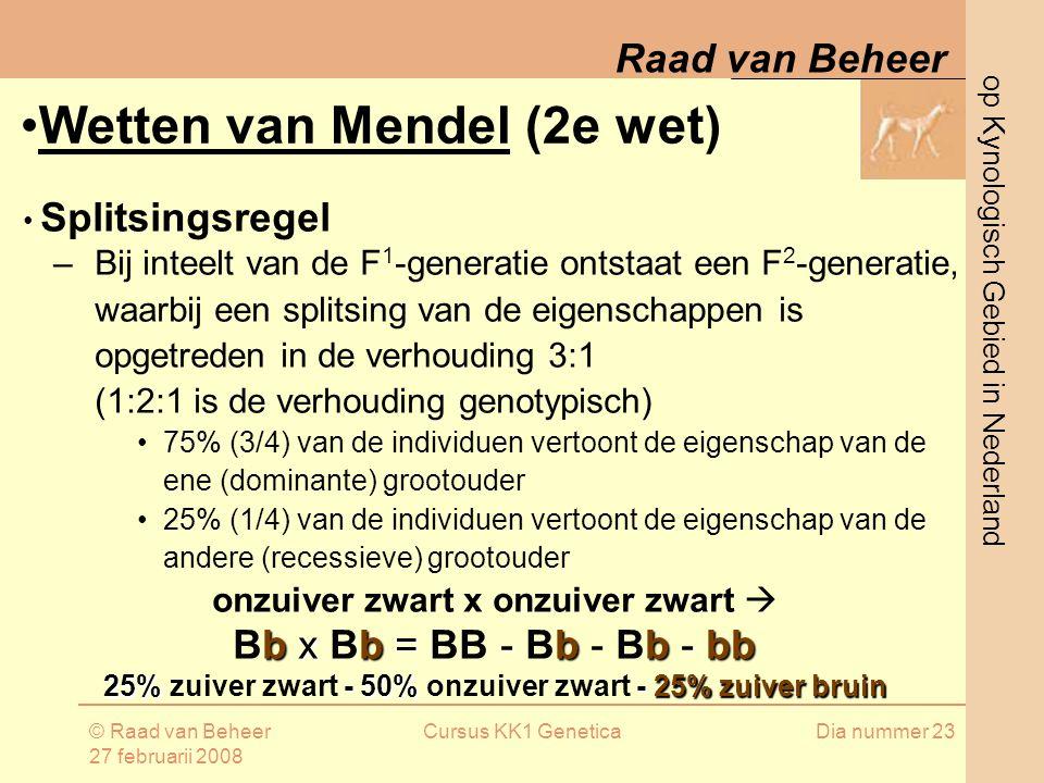 op Kynologisch Gebied in Nederland Raad van Beheer © Raad van Beheer 27 februarii 2008 Cursus KK1 GeneticaDia nummer 23 Splitsingsregel –Bij inteelt van de F 1 -generatie ontstaat een F 2 -generatie, waarbij een splitsing van de eigenschappen is opgetreden in de verhouding 3:1 (1:2:1 is de verhouding genotypisch) 75% (3/4) van de individuen vertoont de eigenschap van de ene (dominante) grootouder 25% (1/4) van de individuen vertoont de eigenschap van de andere (recessieve) grootouder onzuiver zwart x onzuiver zwart  bxb=-b b- bb Bb x Bb = BB - Bb - Bb - bb 25%- 50%- 25%zuiverbruin 25% zuiver zwart - 50% onzuiver zwart - 25% zuiver bruin Wetten van Mendel (2e wet)