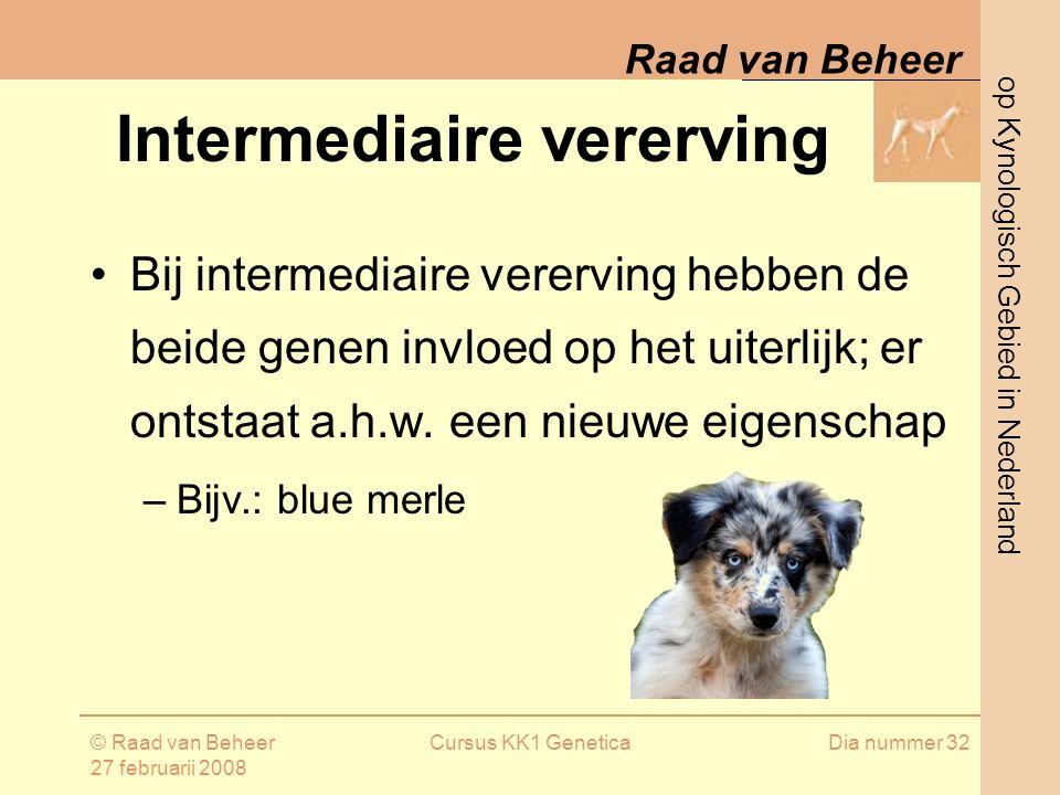 op Kynologisch Gebied in Nederland Raad van Beheer © Raad van Beheer 27 februarii 2008 Cursus KK1 GeneticaDia nummer 32 Intermediaire vererving Bij intermediaire vererving hebben de beide genen invloed op het uiterlijk; er ontstaat a.h.w.