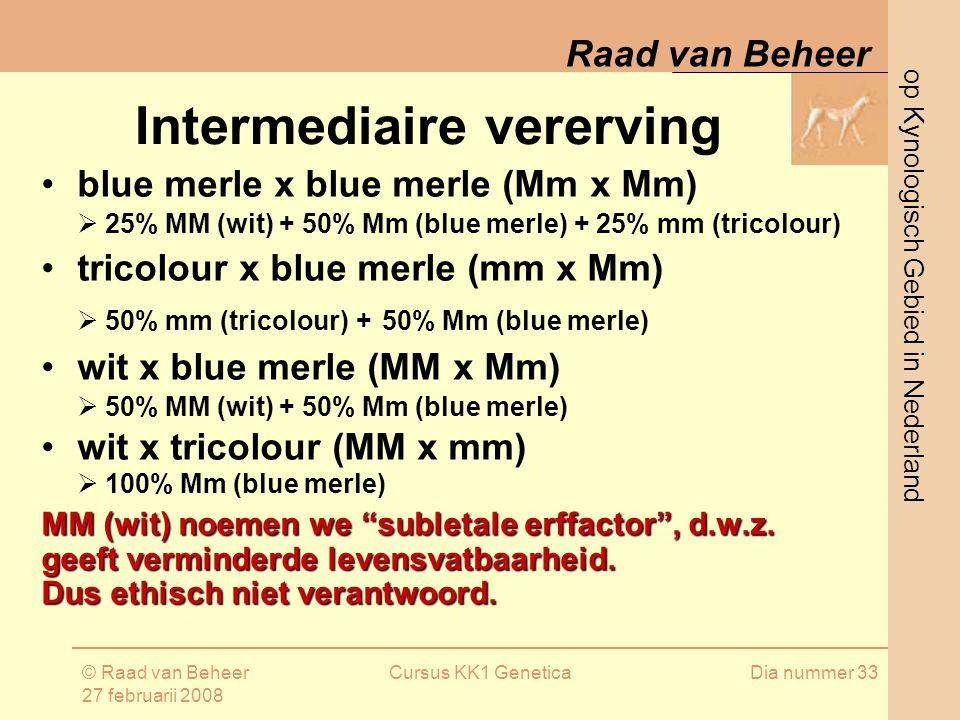 op Kynologisch Gebied in Nederland Raad van Beheer © Raad van Beheer 27 februarii 2008 Cursus KK1 GeneticaDia nummer 33 Intermediaire vererving blue merle x blue merle (Mm x Mm)  25% MM (wit) + 50% Mm (blue merle) + 25% mm (tricolour) tricolour x blue merle (mm x Mm)  50% mm (tricolour) + 50% Mm (blue merle) wit x blue merle (MM x Mm)  50% MM (wit) + 50% Mm (blue merle) wit x tricolour (MM x mm)  100% Mm (blue merle) MM (wit) noemen we subletale erffactor , d.w.z.