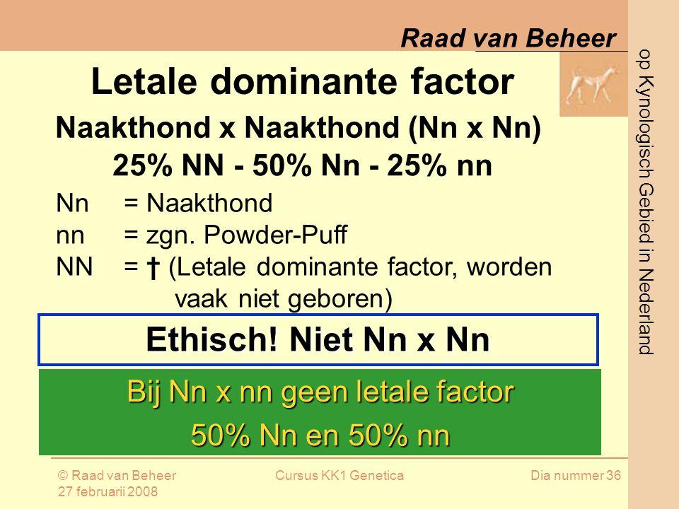 op Kynologisch Gebied in Nederland Raad van Beheer © Raad van Beheer 27 februarii 2008 Cursus KK1 GeneticaDia nummer 36 Letale dominante factor Naakthond x Naakthond (Nn x Nn) Bij Nn x nn geen letale factor 50% Nn en 50% nn Ethisch.
