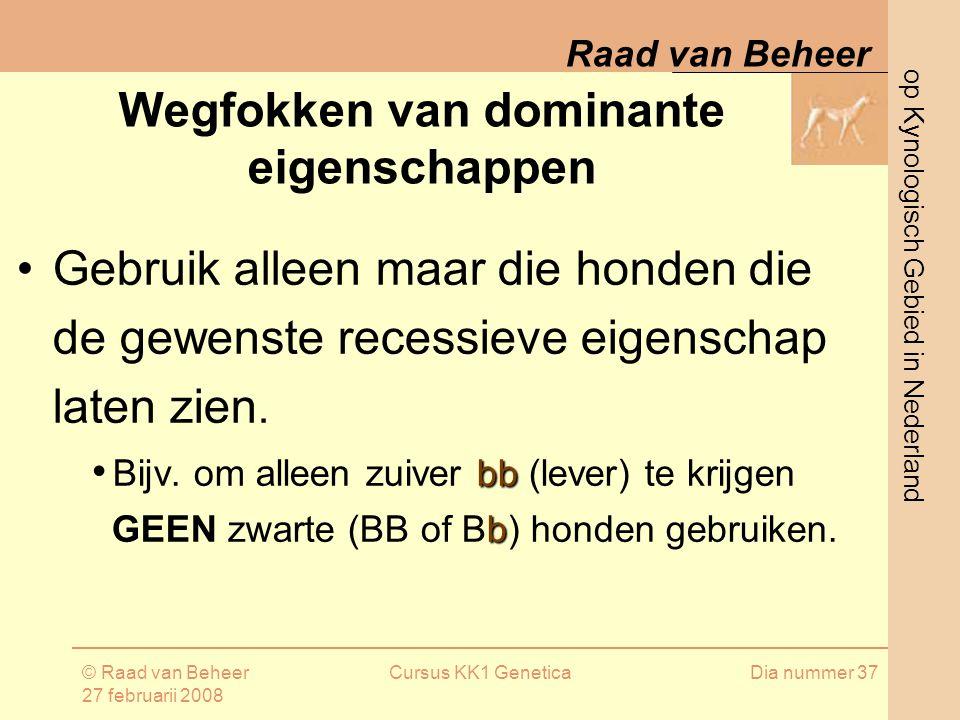 op Kynologisch Gebied in Nederland Raad van Beheer © Raad van Beheer 27 februarii 2008 Cursus KK1 GeneticaDia nummer 37 Gebruik alleen maar die honden die de gewenste recessieve eigenschap laten zien.