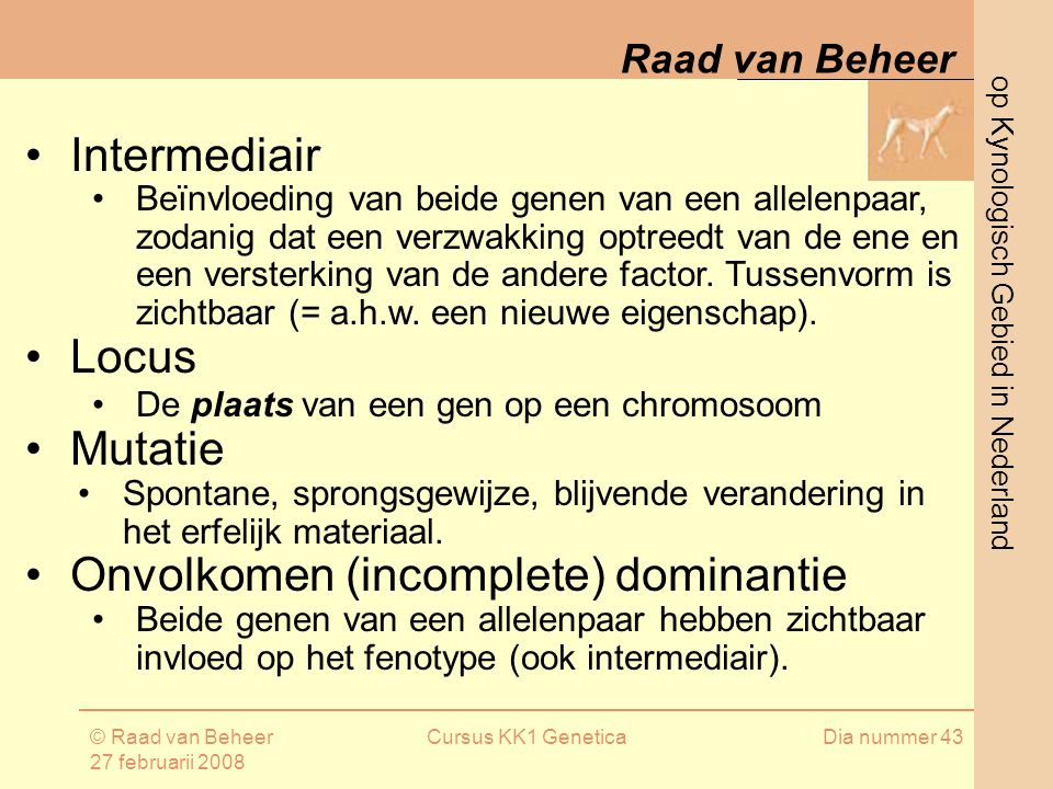 op Kynologisch Gebied in Nederland Raad van Beheer © Raad van Beheer 27 februarii 2008 Cursus KK1 GeneticaDia nummer 43 Intermediair Beïnvloeding van beide genen van een allelenpaar, zodanig dat een verzwakking optreedt van de ene en een versterking van de andere factor.