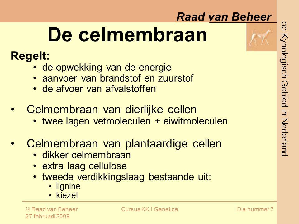 op Kynologisch Gebied in Nederland Raad van Beheer © Raad van Beheer 27 februarii 2008 Cursus KK1 GeneticaDia nummer 7 De celmembraan Regelt: de opwekking van de energie aanvoer van brandstof en zuurstof de afvoer van afvalstoffen Celmembraan van dierlijke cellen twee lagen vetmoleculen + eiwitmoleculen Celmembraan van plantaardige cellen dikker celmembraan extra laag cellulose tweede verdikkingslaag bestaande uit: lignine kiezel