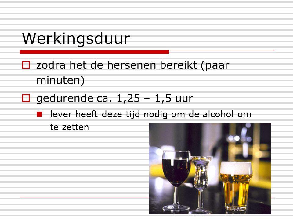 Werkingsduur  zodra het de hersenen bereikt (paar minuten)  gedurende ca. 1,25 – 1,5 uur lever heeft deze tijd nodig om de alcohol om te zetten