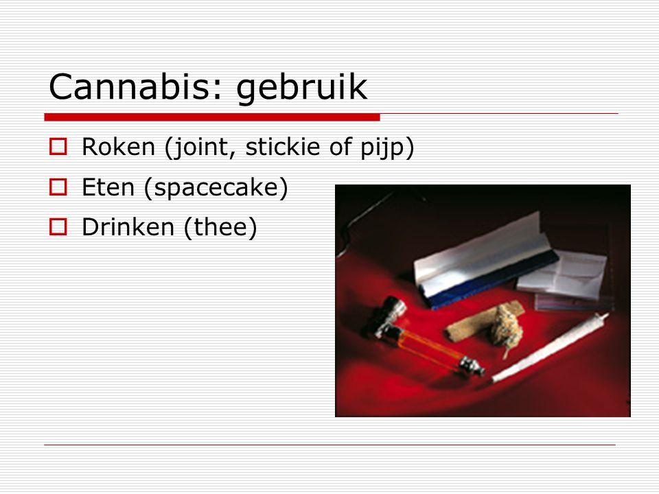 Cannabis: gebruik  Roken (joint, stickie of pijp)  Eten (spacecake)  Drinken (thee)