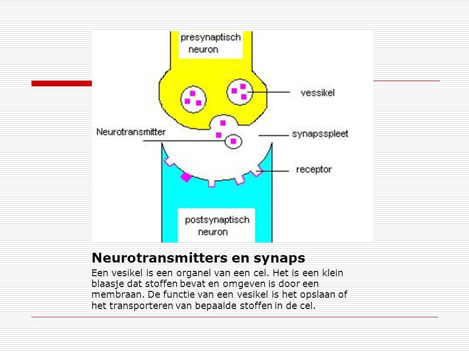 Neurotransmitters en synaps Een vesikel is een organel van een cel. Het is een klein blaasje dat stoffen bevat en omgeven is door een membraan. De fun