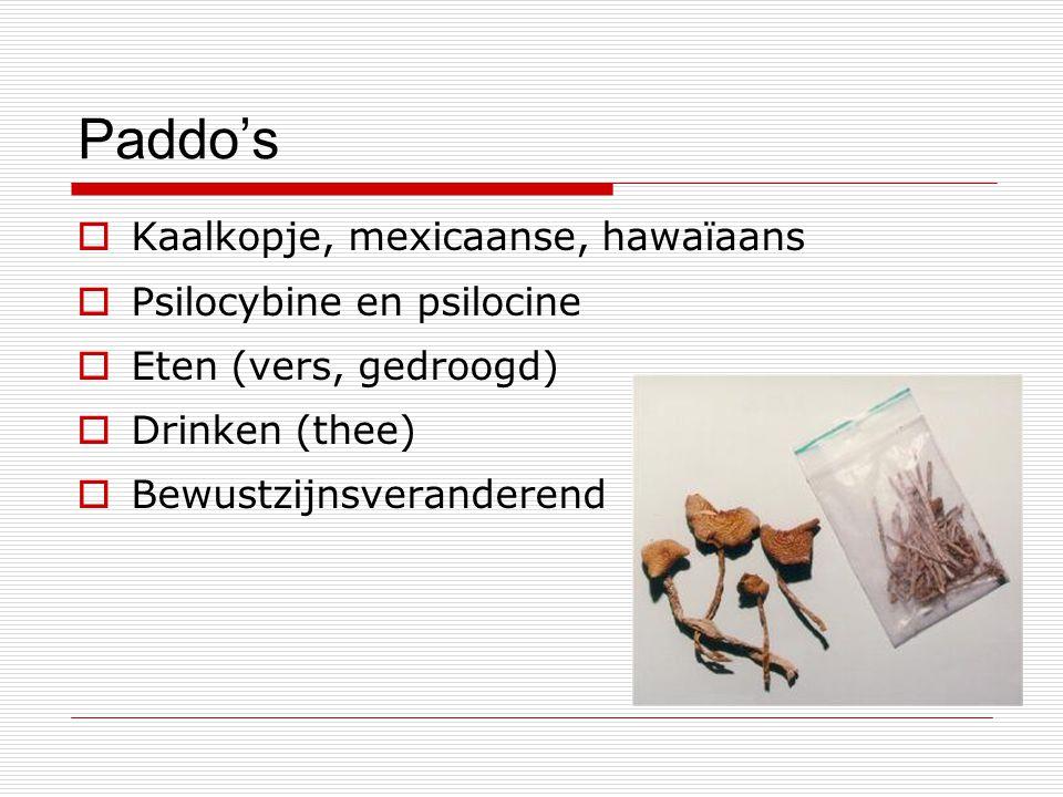 Paddo's  Kaalkopje, mexicaanse, hawaïaans  Psilocybine en psilocine  Eten (vers, gedroogd)  Drinken (thee)  Bewustzijnsveranderend