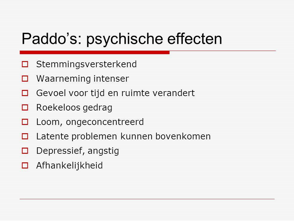 Paddo's: psychische effecten  Stemmingsversterkend  Waarneming intenser  Gevoel voor tijd en ruimte verandert  Roekeloos gedrag  Loom, ongeconcen