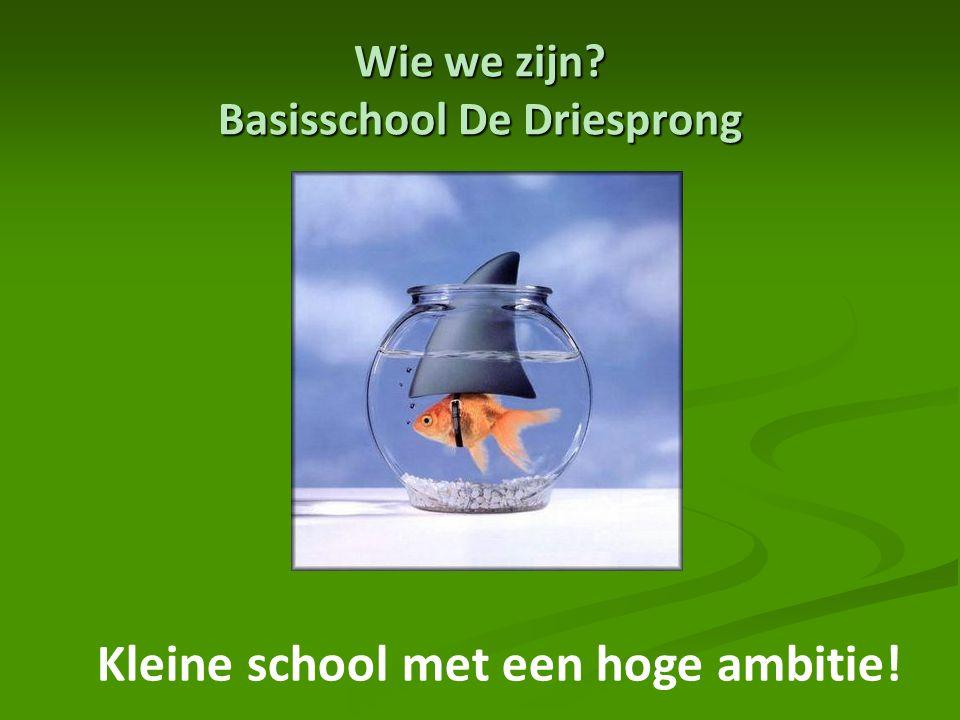 Wie we zijn? Basisschool De Driesprong Kleine school met een hoge ambitie!