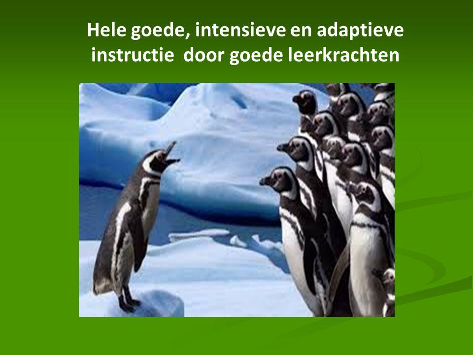 Hele goede, intensieve en adaptieve instructie door goede leerkrachten