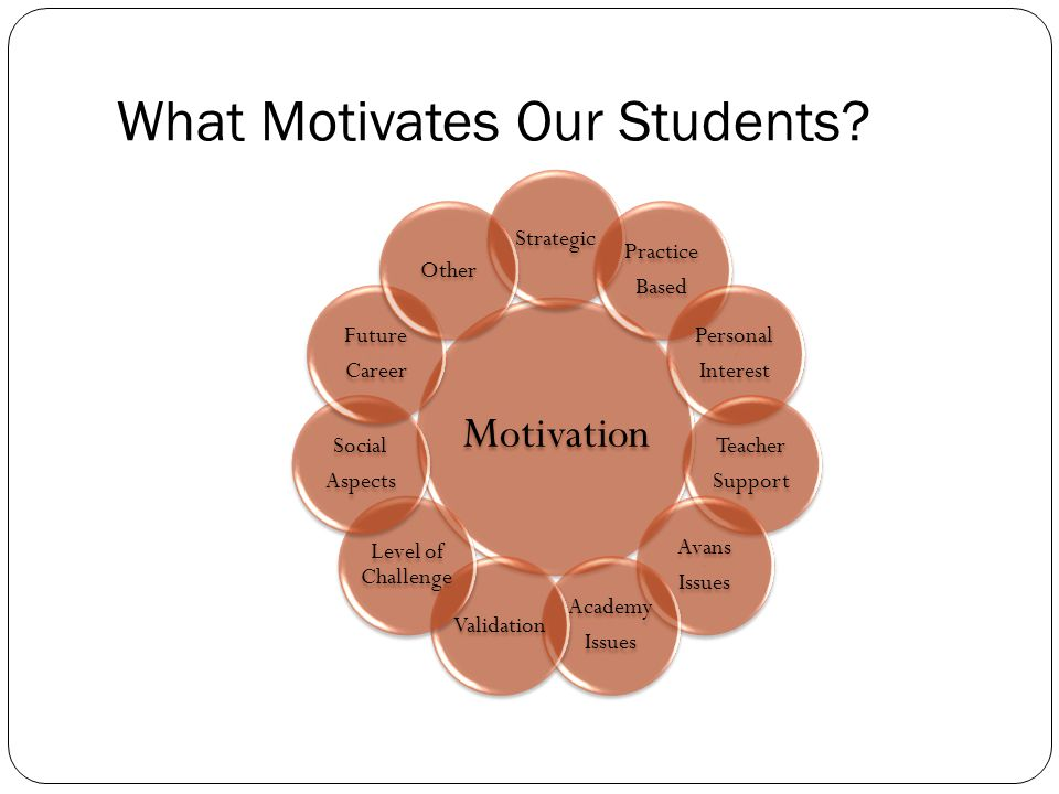 What Motivates Our Students.