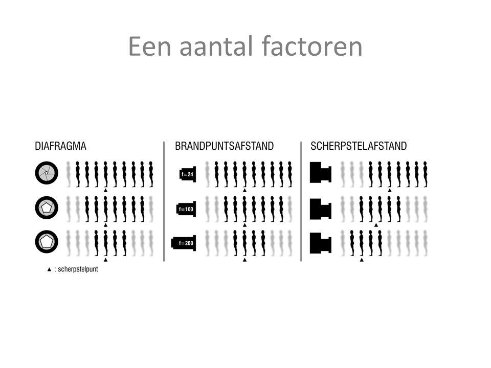 Een aantal factoren