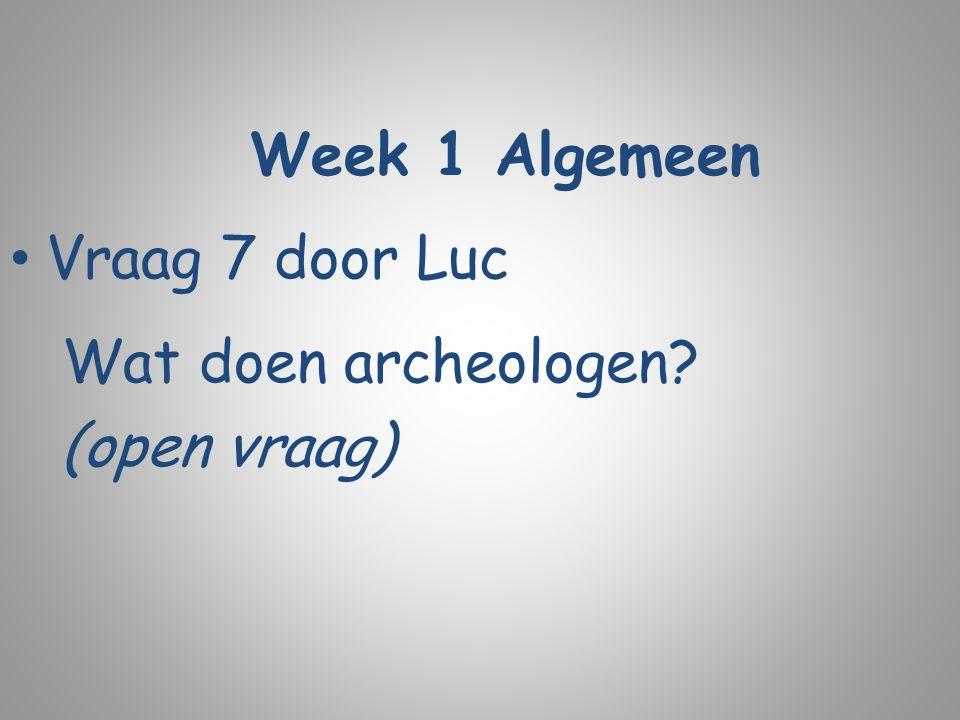Week 1 Algemeen Vraag 7 door Luc Wat doen archeologen? (open vraag)