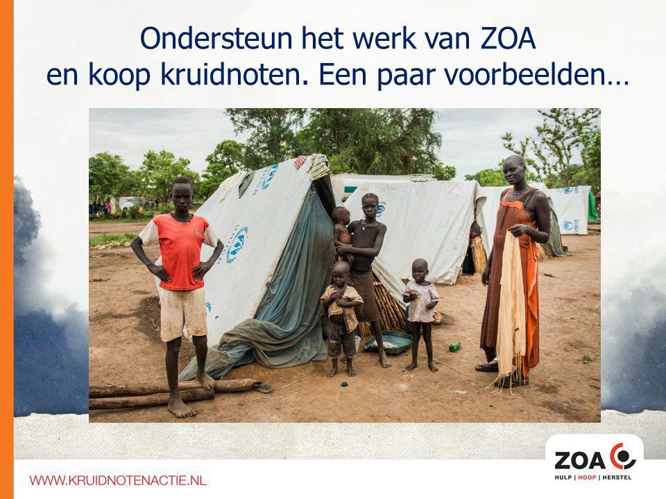 ZOA zorgt ervoor dat: Kinderen naar school kunnen Mensen schoon (drink)water hebben Er meer voedsel komt door landbouw projecten Ondersteun het werk van ZOA en koop kruidnoten.