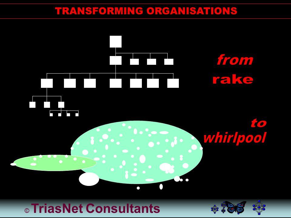 © TriasNet Consultants SYSTEM ANALYSIS: CARPENTER'S PENTANGLE II