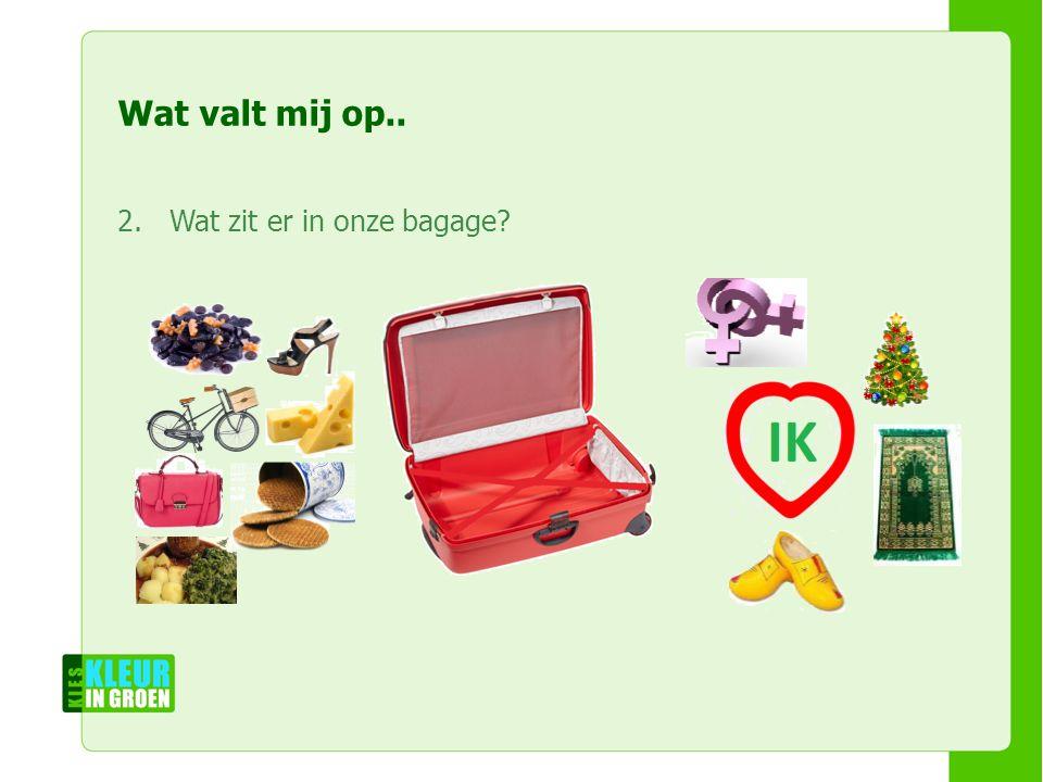 Naam workshopleiders Naam workshop Naam instelling Wat valt mij op..