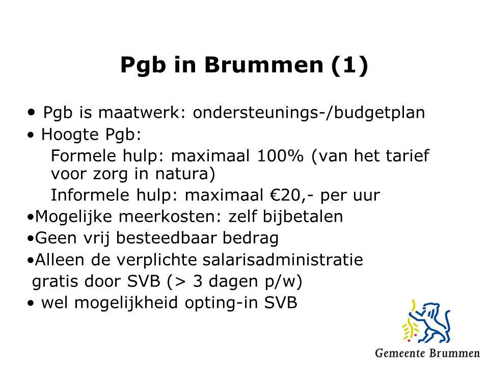 Pgb in Brummen (1) Pgb is maatwerk: ondersteunings-/budgetplan Hoogte Pgb: Formele hulp: maximaal 100% (van het tarief voor zorg in natura) Informele