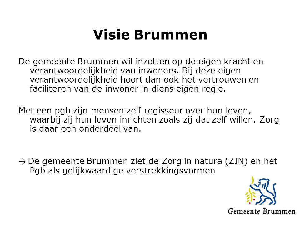 Visie Brummen De gemeente Brummen wil inzetten op de eigen kracht en verantwoordelijkheid van inwoners. Bij deze eigen verantwoordelijkheid hoort dan