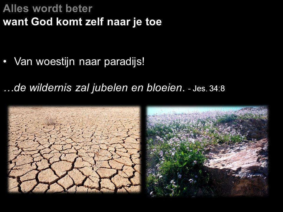 Alles wordt beter want God komt zelf naar je toe Van woestijn naar paradijs! …de wildernis zal jubelen en bloeien. - Jes. 34:8