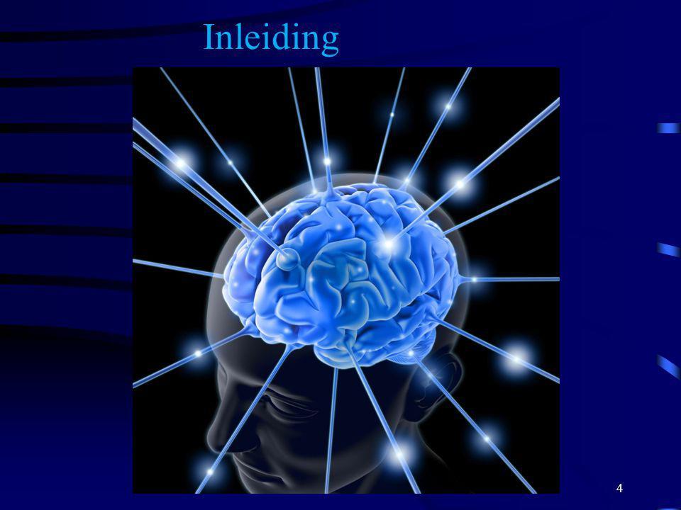 Vooral behandelen depressie Revalidatie beperken tot voorkomen van secundaire complicaties Doen wat verder mogelijk is.