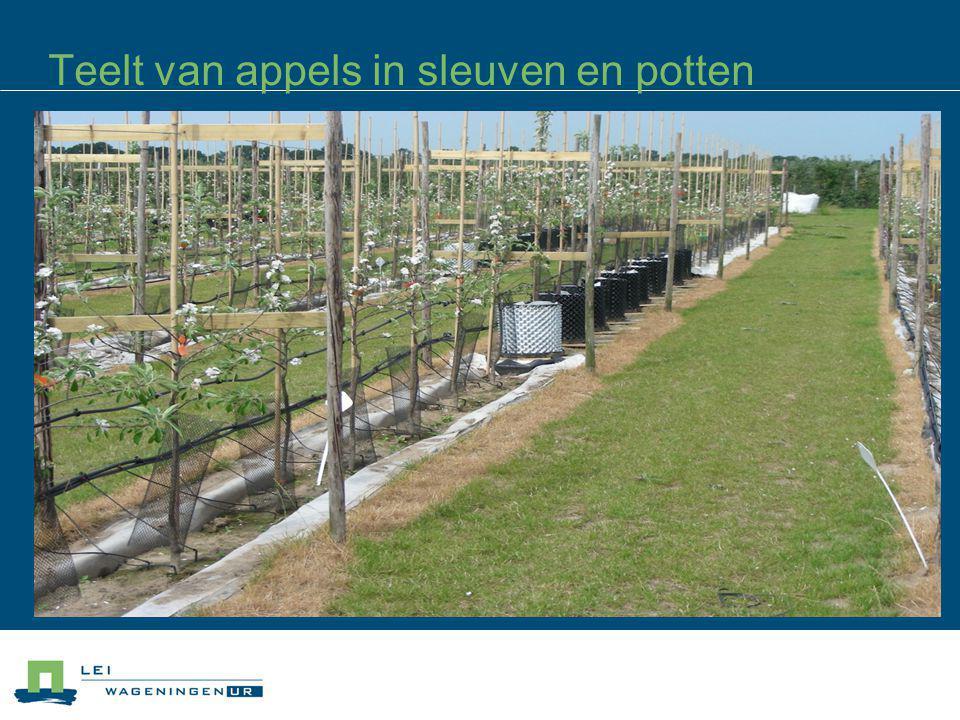 Teelt van appels in sleuven en potten