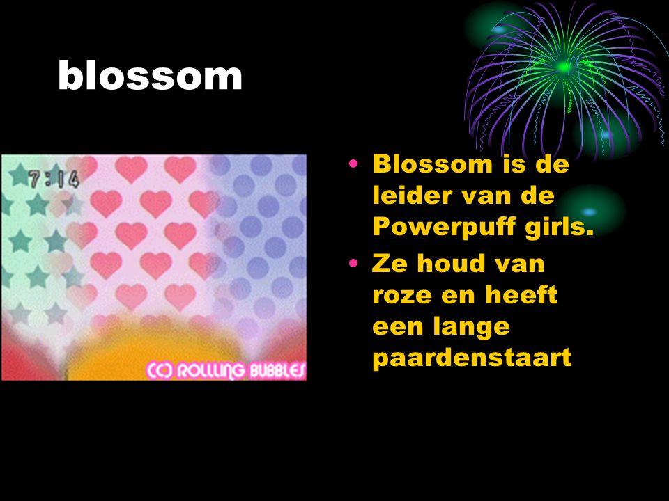 blossom Blossom is de leider van de Powerpuff girls. Ze houd van roze en heeft een lange paardenstaart