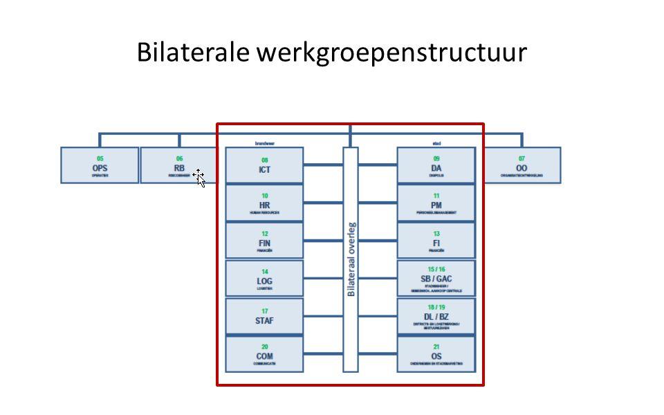 Bilaterale werkgroepenstructuur