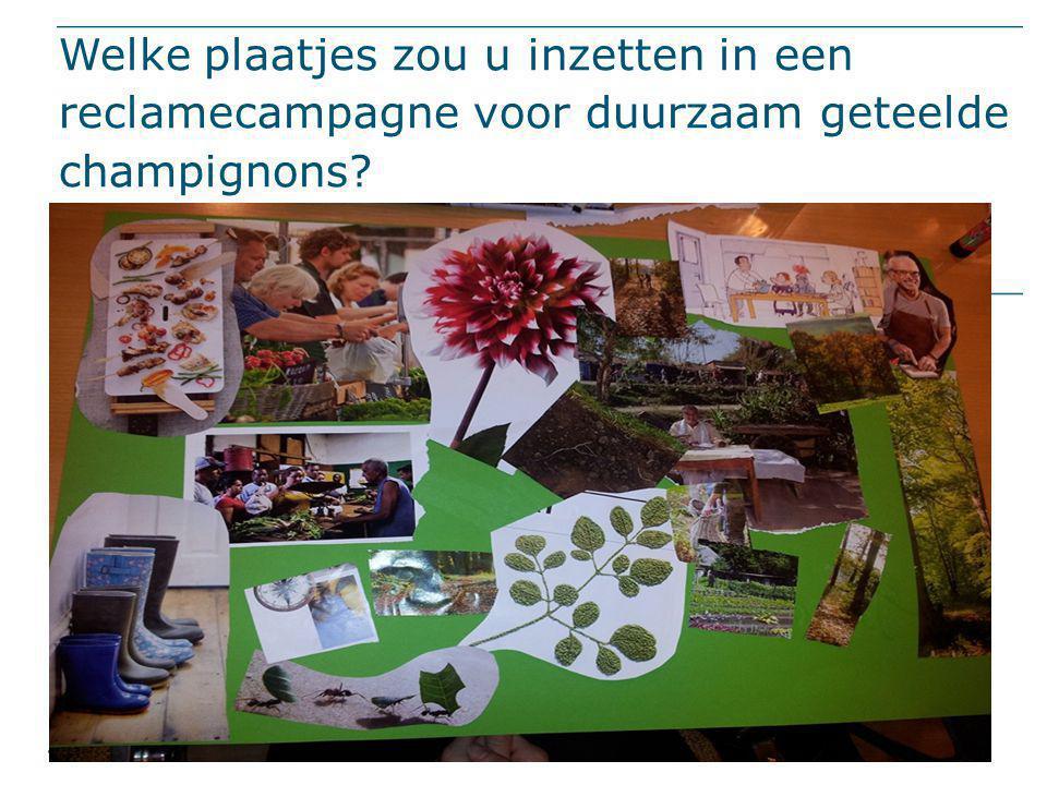 Welke plaatjes zou u inzetten in een reclamecampagne voor duurzaam geteelde champignons