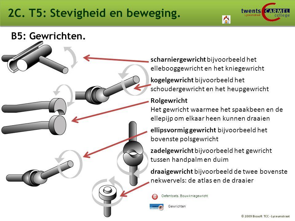 © 2009 Biosoft TCC - Lyceumstraat V4. Leren en werken