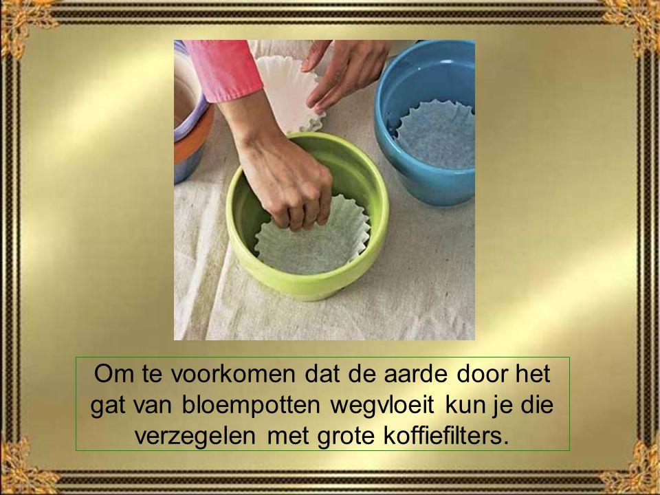 Gebruik ijs uw om meubelafdrukken op tapijten te verwijderen.