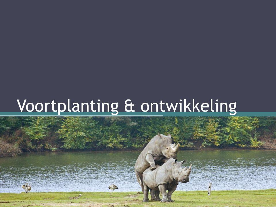 Voortplanting & ontwikkeling